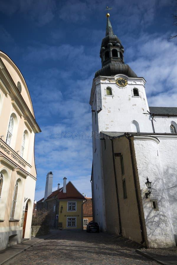 Gammal stad av Tallinn huvudstad av Estland fotografering för bildbyråer