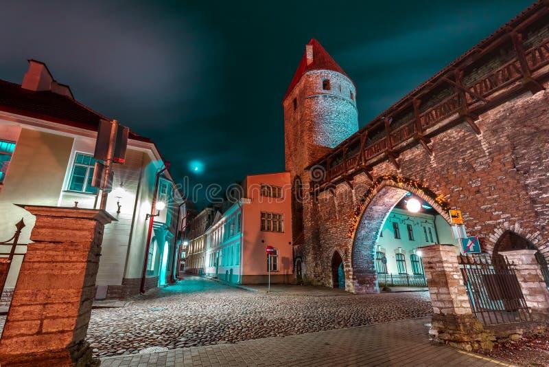 Gammal stad för natt av Tallinn, Estland arkivbild
