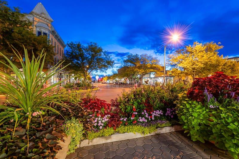 Gammal stad Fort Collins på den blåa timmen royaltyfria bilder