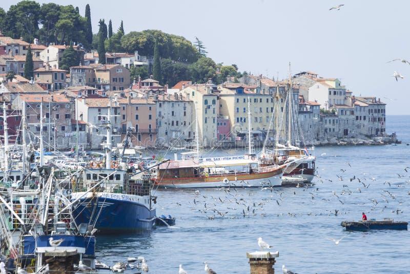 Gammal stad och hamn i Rovinj royaltyfri foto