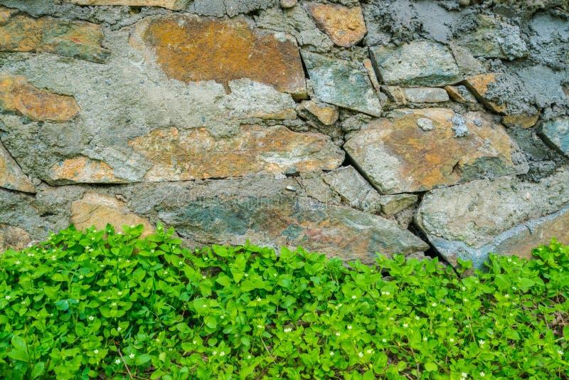 Gammal stenvägg med sidor arkivfoto