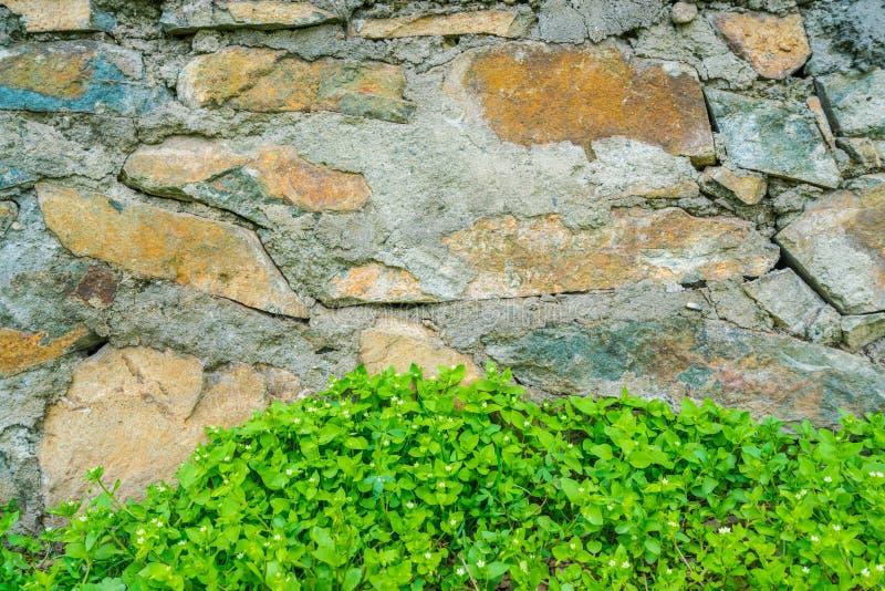 Gammal stenvägg med sidor royaltyfri fotografi