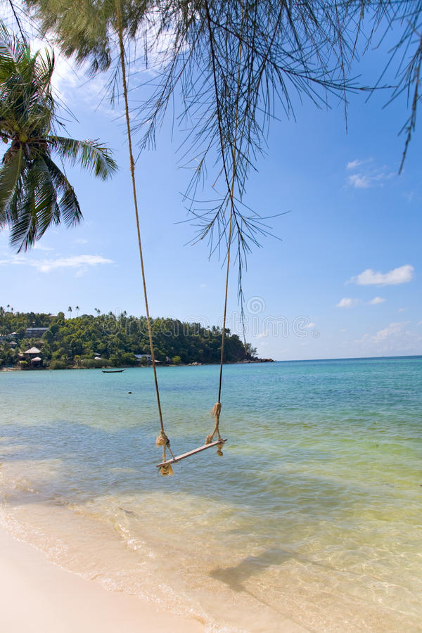 gammal swing för strand som binds till den tropiska treen arkivfoton