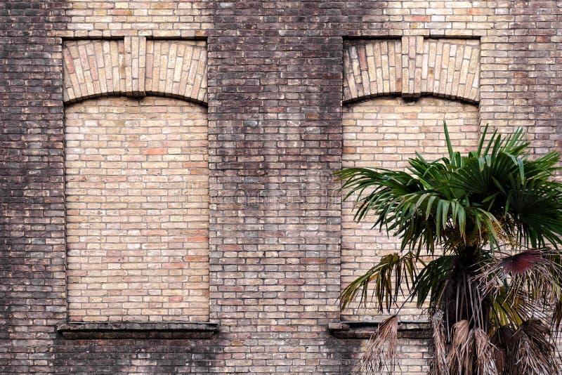 Gammal tegelstenvägg med två falska fönster, grön palmträd nära byggnad fotografering för bildbyråer