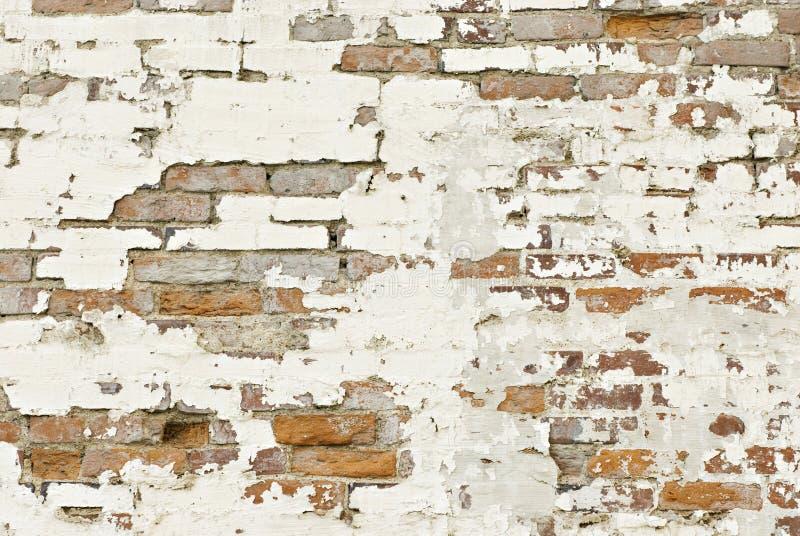 Gammal tegelstenväggbakgrund royaltyfri fotografi
