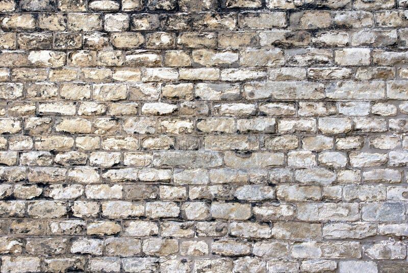 Gammal tegelstenväggbakgrund royaltyfria foton