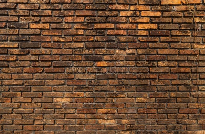 Gammal tegelstenvägg. royaltyfri foto