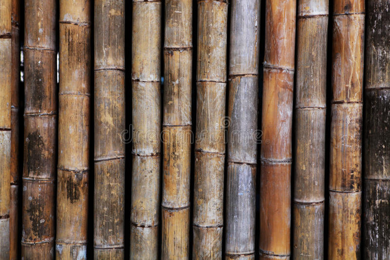 gammal textur för asiatisk bakgrundsbambu arkivbilder