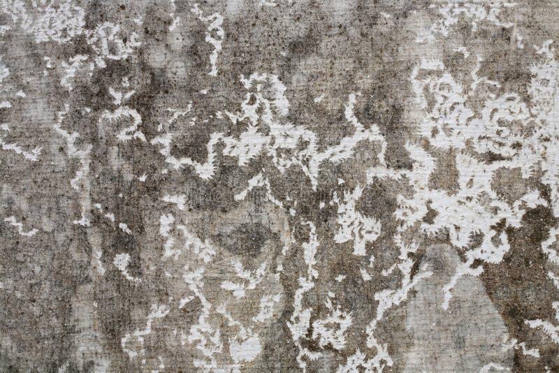 gammal texturvägg för cement royaltyfri fotografi