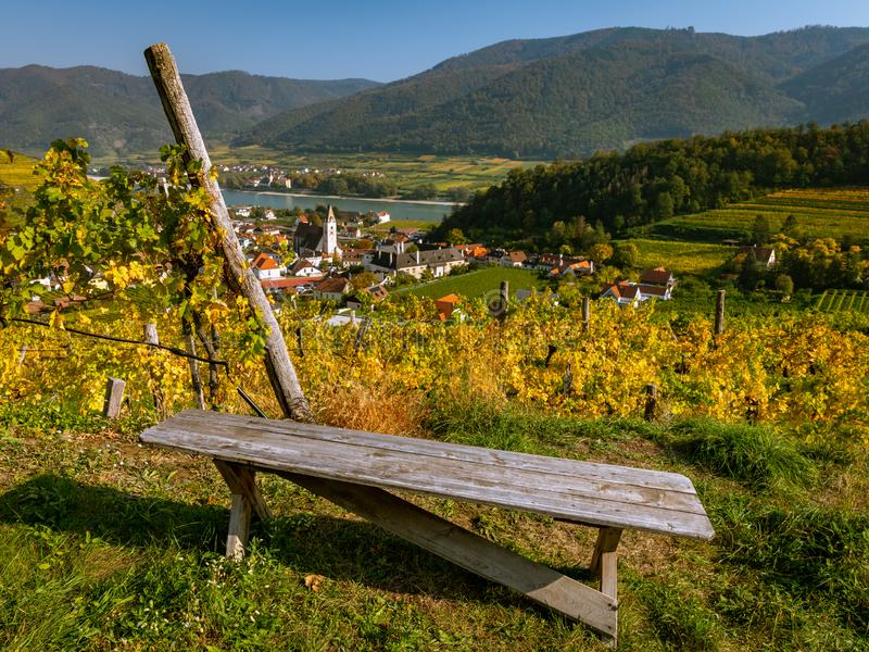 Gammal träbänk i en vingård nära Spitz en der Donau i höst royaltyfri fotografi