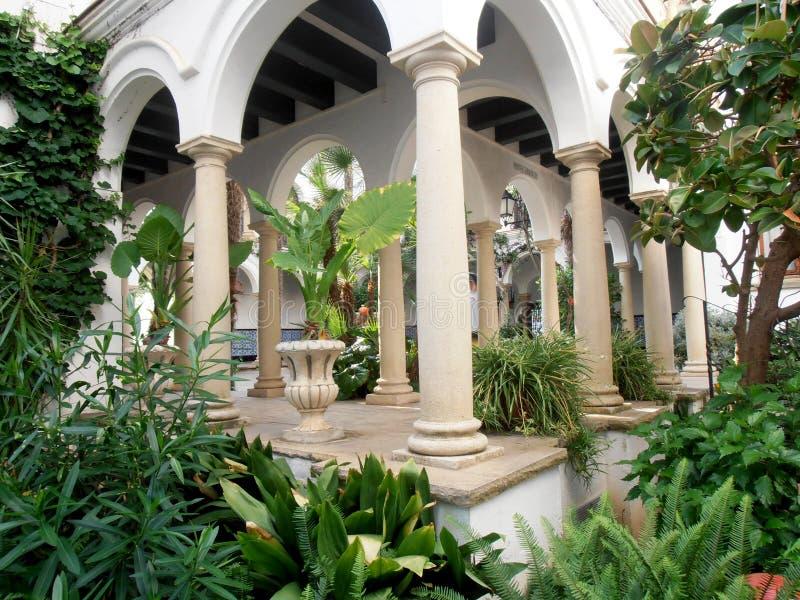 Gammal trädgård som dekoreras med många växter royaltyfri fotografi