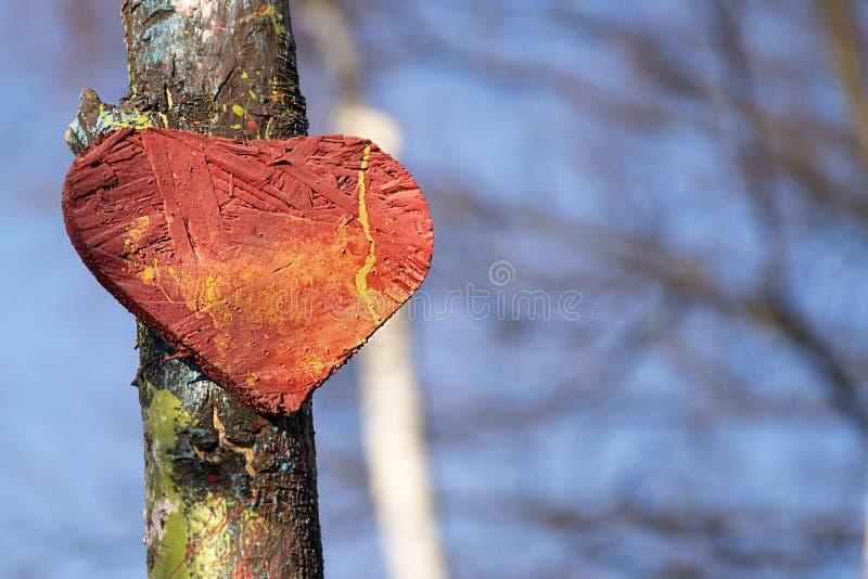 Gammal trähjärta på blå himmel för träd och skogbakgrund Röd förälskelsesymbolform som utomhus textureras royaltyfri foto