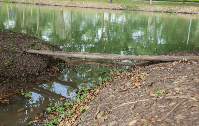 Gammal träjournalbro över floden arkivbild