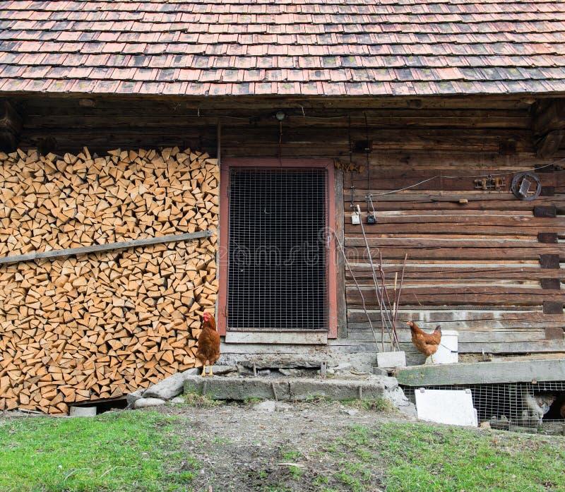 Gammal träladugård med bunten av vedträ arkivfoto