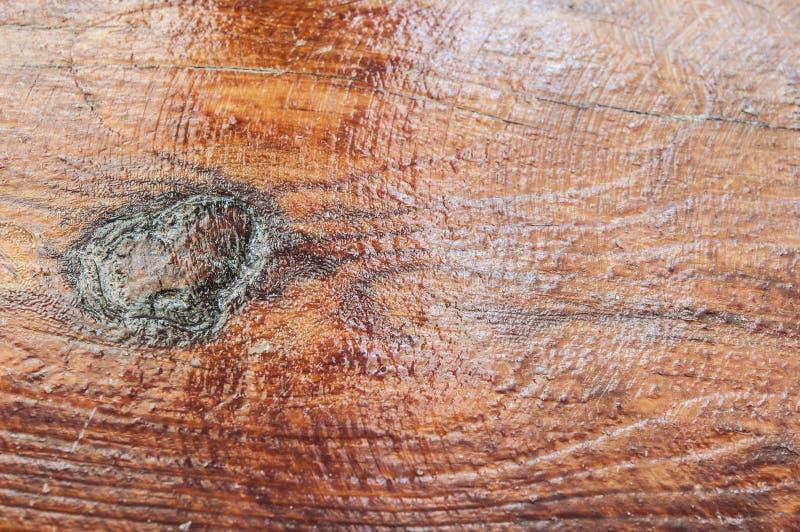 gammal träplanka med hjärtaformfnuren royaltyfri bild