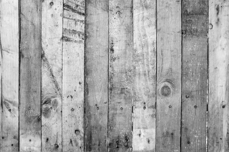 Gammal träplankavägg med skrapan och lantlig vägg som är svartvit royaltyfria foton
