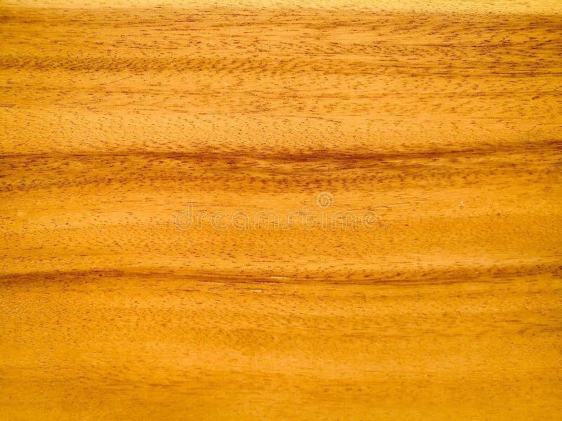 Gammal trätextur för natur arkivfoton