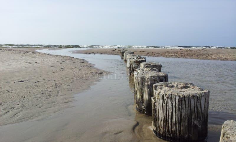 Gammal trävågbrytare som går in i Östersjön royaltyfri bild