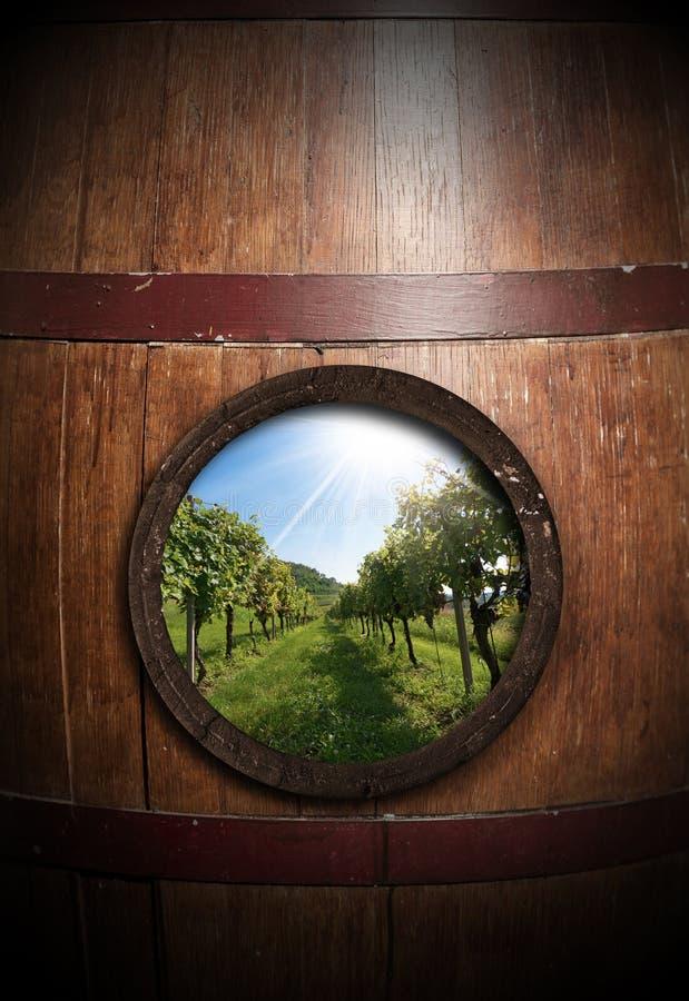 Gammal trävinfat med en vingård inom royaltyfria bilder
