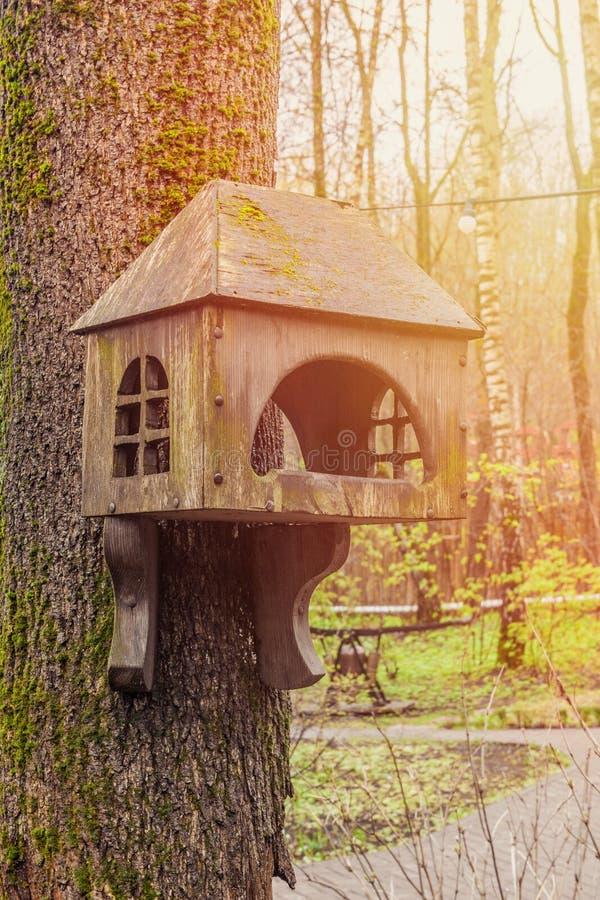 gammal trävoljär på ett träd i Forest Park, wood skydd för hand för att fåglar ska spendera vintern fotografering för bildbyråer