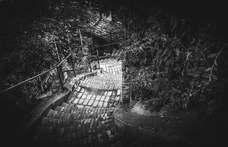 Gammal trappa i dramatiskt svartvitt royaltyfri foto