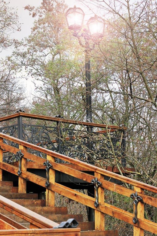 Gammal trappuppgång Gammal trätrappuppgång med smidesjärnbeståndsdelar Den gamla stegen i parkerar Stad Chernigov historia fotografering för bildbyråer