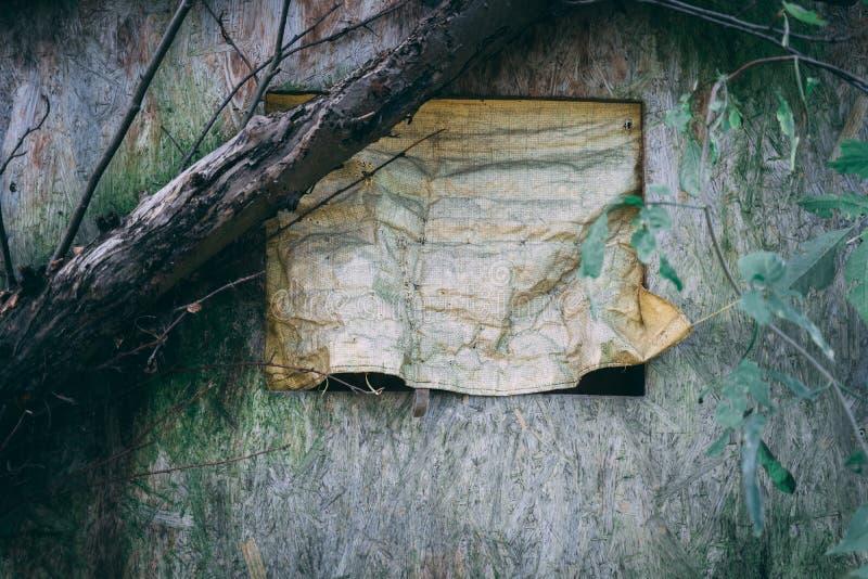 Gammal Treehouse i skogen arkivbilder