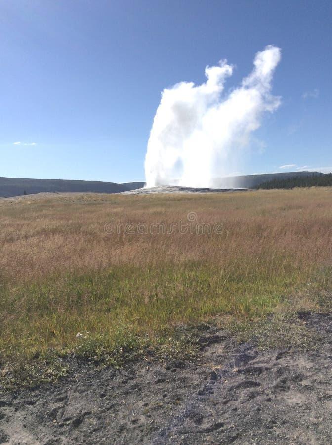 gammal trogen geyser arkivfoton
