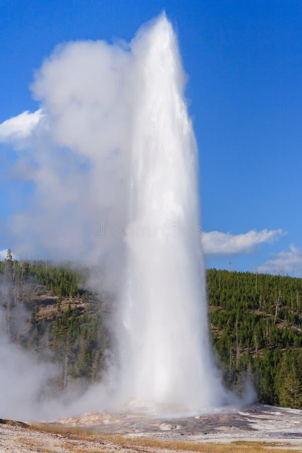 Gammal trogen Geyser och springbrunn på den Yellowstone nationalparken Wyoming USA arkivfoton