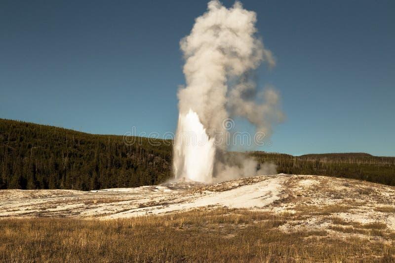 Gammal trogen geyser, Yellowstone nationalpark, WY, USA royaltyfri foto