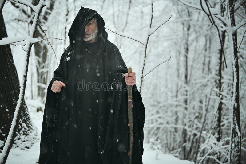 Gammal trollkarl i den vita skogen royaltyfria bilder