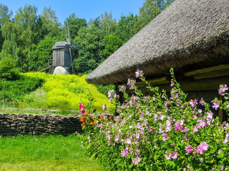 Gammal väderkvarn i estonian bygd royaltyfria bilder