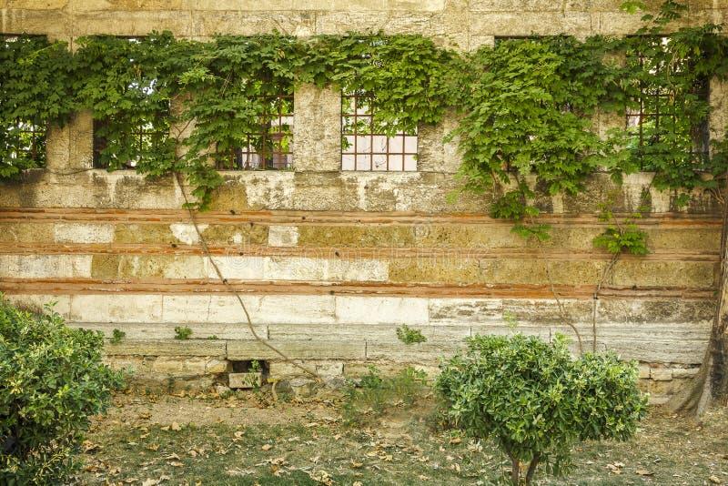 Gammal vägg av en byggnad med fyra fönster och skyddsgallrar royaltyfria foton