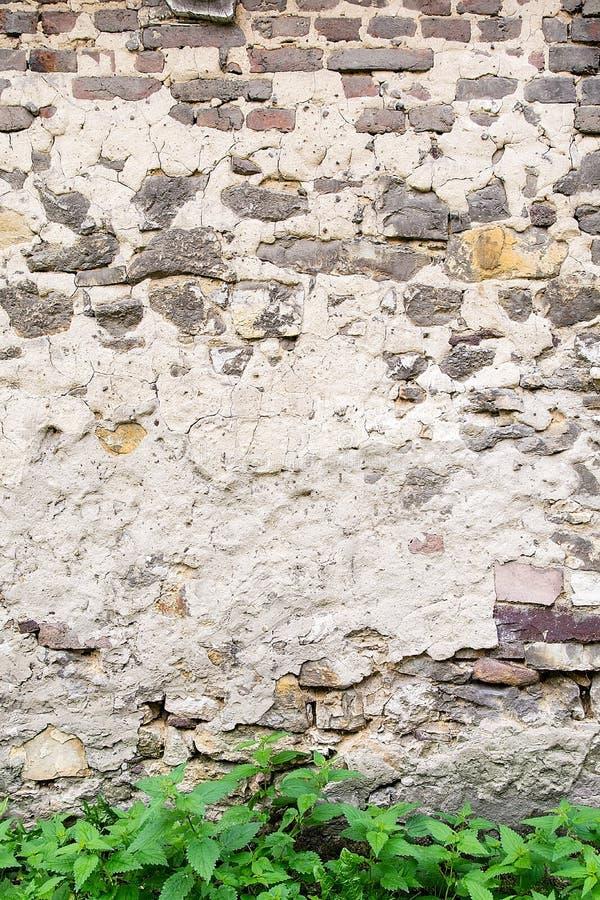 gammal vägg för bakgrundstegelsten royaltyfria bilder