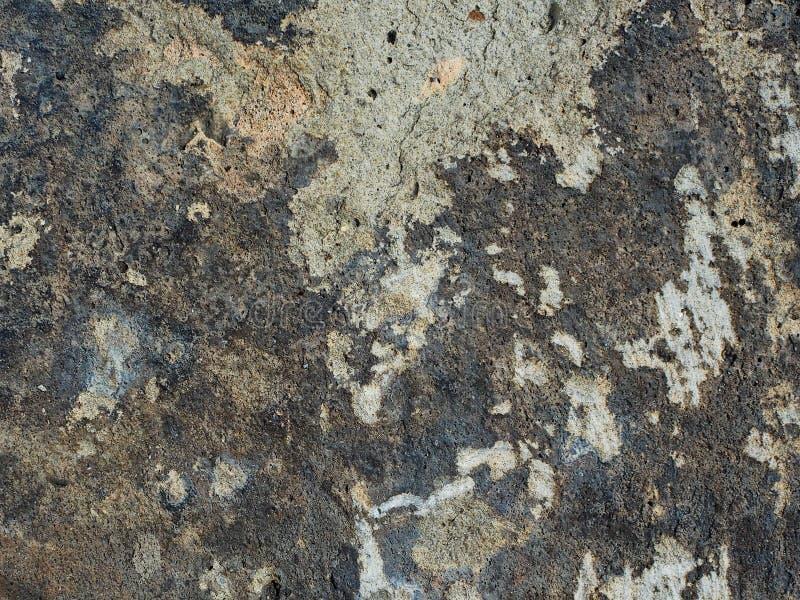 gammal vägg för cement royaltyfri fotografi