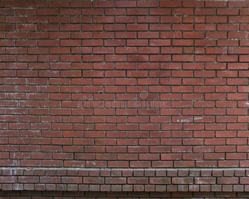 Gammal vägg för röd tegelsten royaltyfri bild