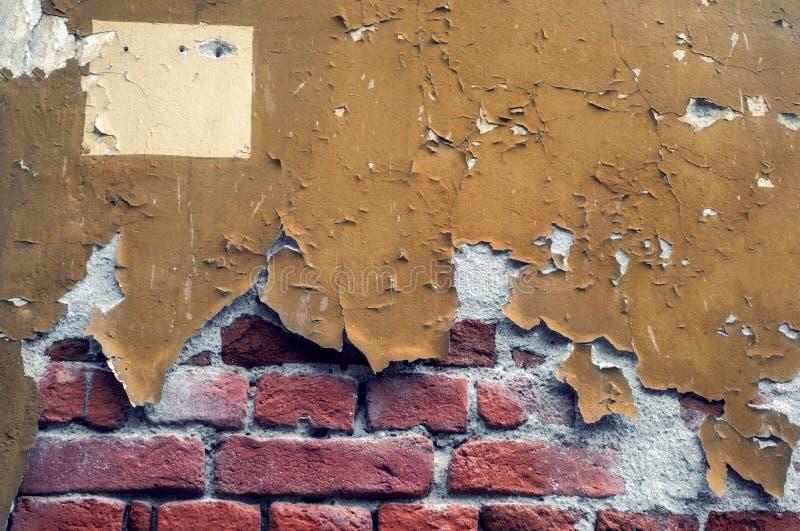 Gammal vägg för röd tegelsten med skalad målarfärg arkivbilder