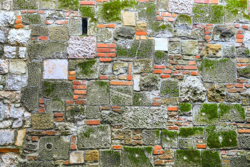 gammal vägg för tegelstenmurgröna royaltyfria bilder