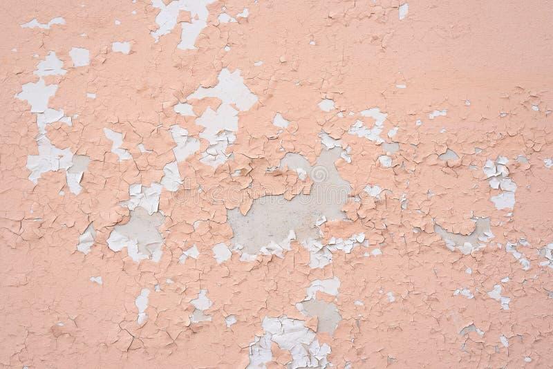 Gammal vägg med två lager av skalning av målarfärg royaltyfri bild