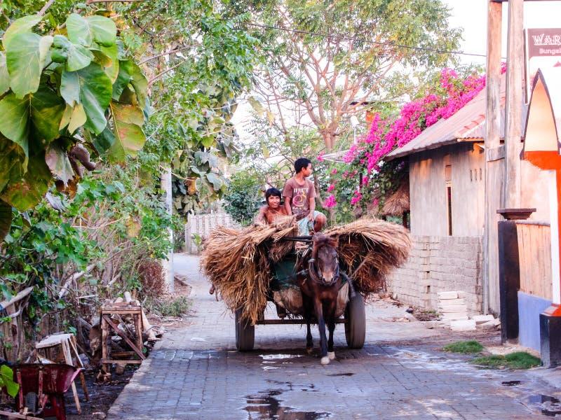 Gammal värld i den nya världen, pojkar som använder deras häst och vagn arkivfoto