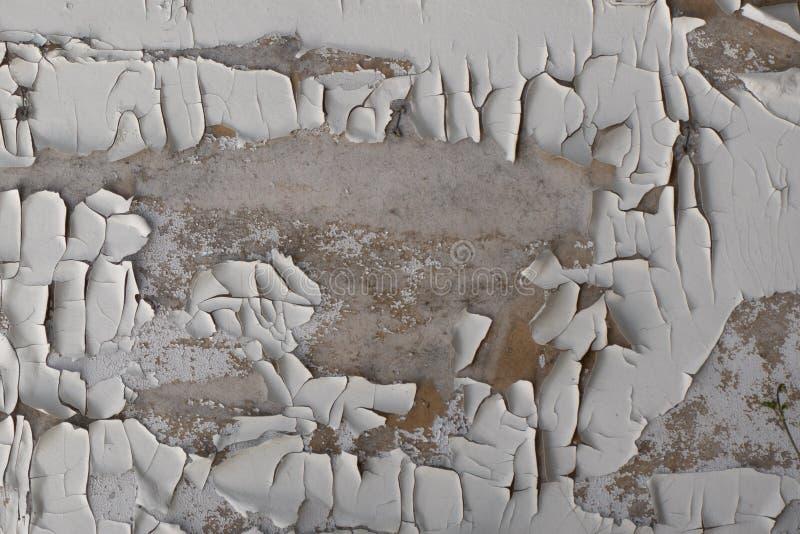 Gammal vit hårt krackad färg på en träyta Kreativ veteranbakgrund arkivfoto