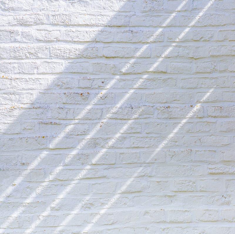 Gammal vit målade tegelstenar royaltyfri bild