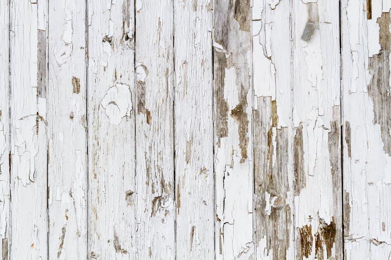 Gammal vit riden ut träbakgrund royaltyfria foton