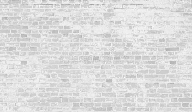 Gammal vit tegelstenvägg med skalningsmålarfärg royaltyfri foto