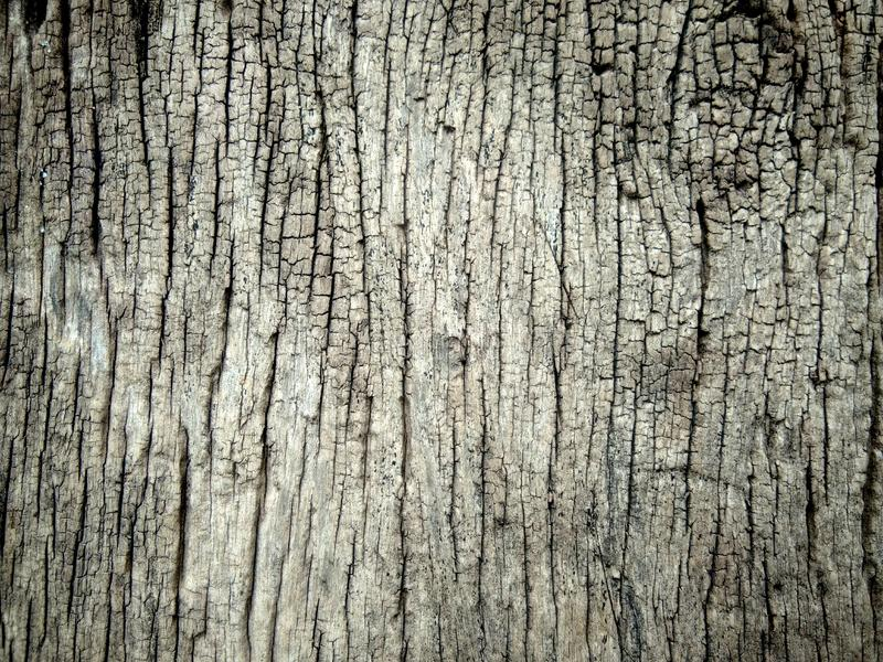 Gammal wood bckgroud arkivbild