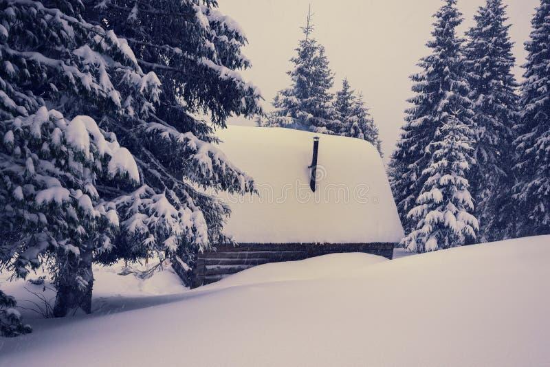 Gammal wood kabin som täckas med snö royaltyfria bilder