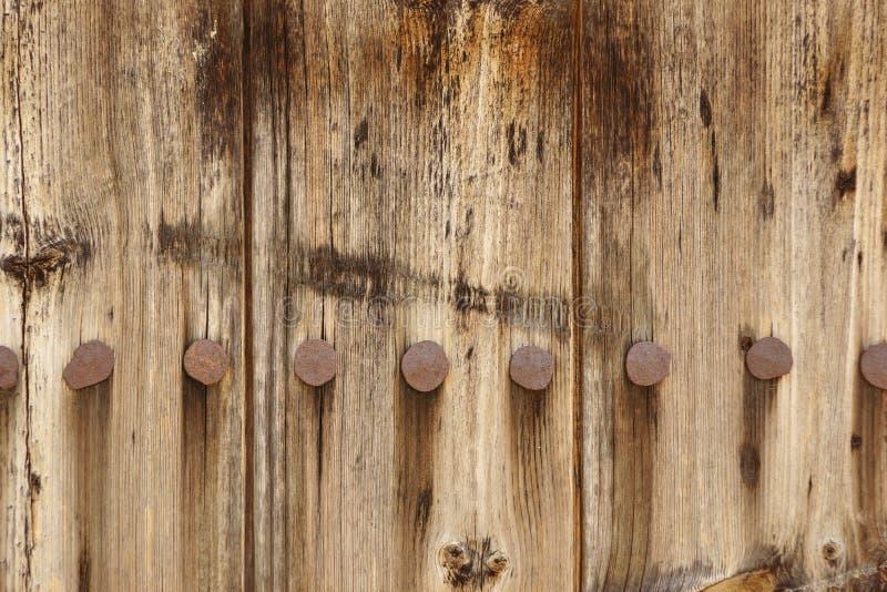 Gammal Wood plankapanel med falska Rusty Iron Nails Texture royaltyfri bild