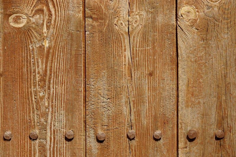 Gammal Wood plankapanel med falska Rusty Iron Nails Texture fotografering för bildbyråer
