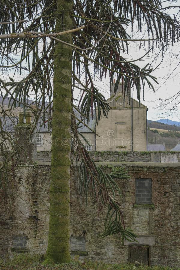 gammala byggnader ireland arkivfoto