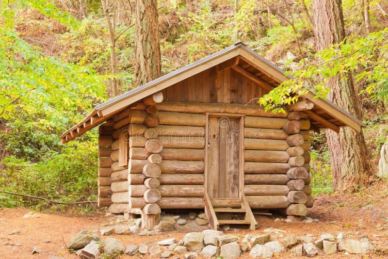 Gammala heltäckande loggar kabinskydd som döljas i skogen fotografering för bildbyråer